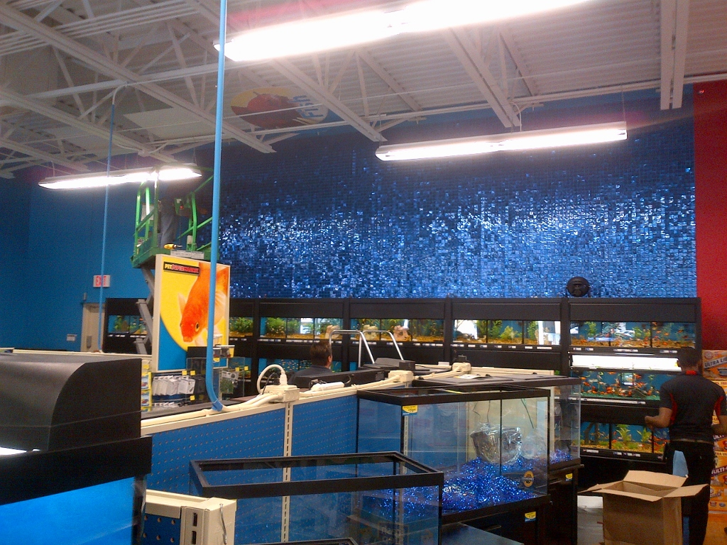 Pet Supermarket Ft. Lauderdale SolaRay Install (1024x768).jpg
