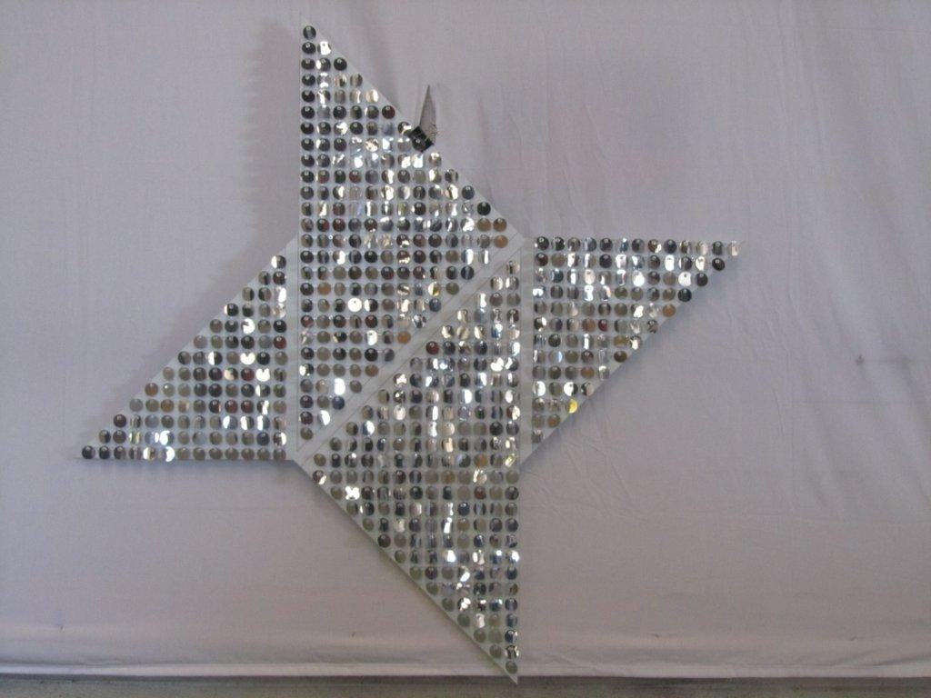BCBGeneration Ninja Star (1024x768).jpg