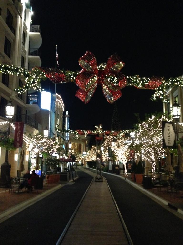 Americana Venue Arts Holiday SolaRay Bows (7).jpg